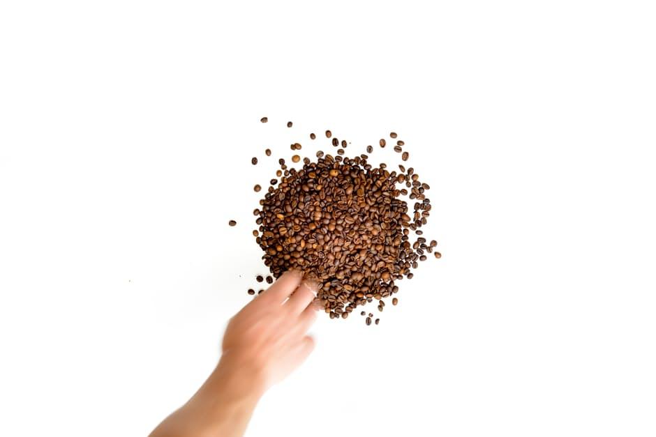 zrna_kave