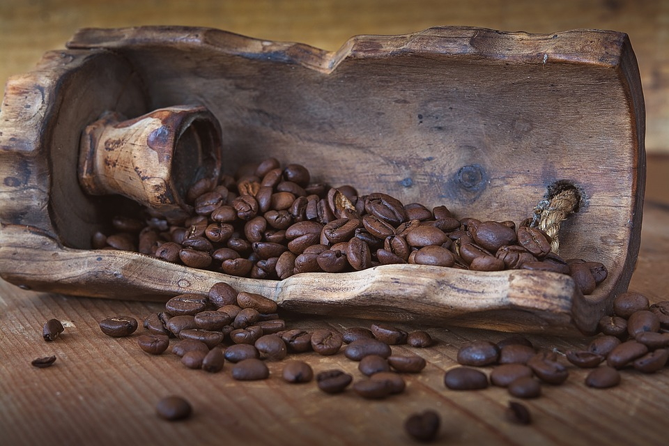 drvo_kava